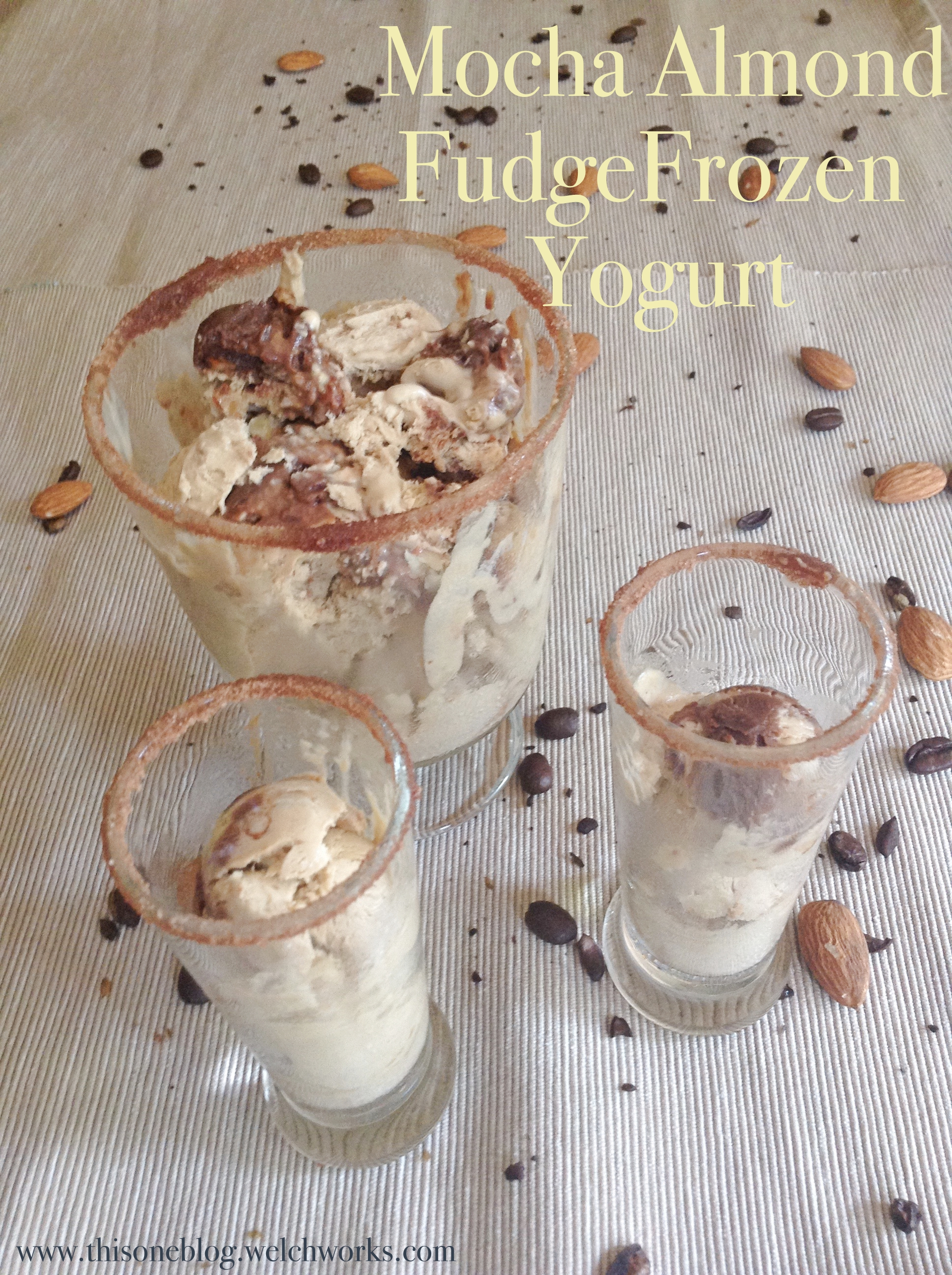 mocha almond fudge frozen yogurt #2